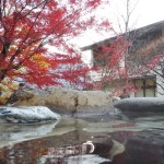 和楽遊苑 温泉