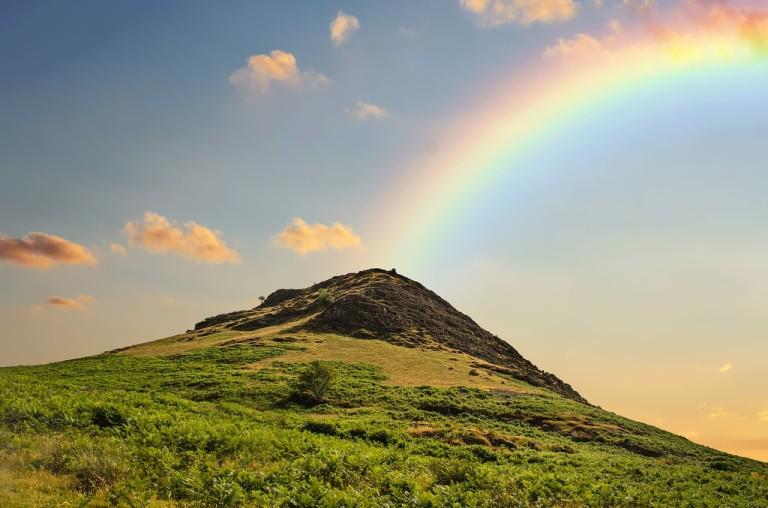 ガクンと落ち込んだ。そして泣いた。ハワイのことわざ『No Rain, No Rainbow』を思い出し、また泣いた。