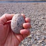 河原で綺麗な石を見つけるのは楽しいね!