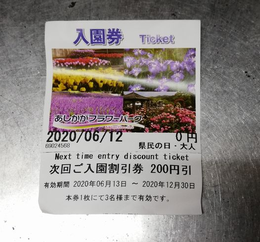 栃木県民の日であしかがフラワーパークが入園無料!